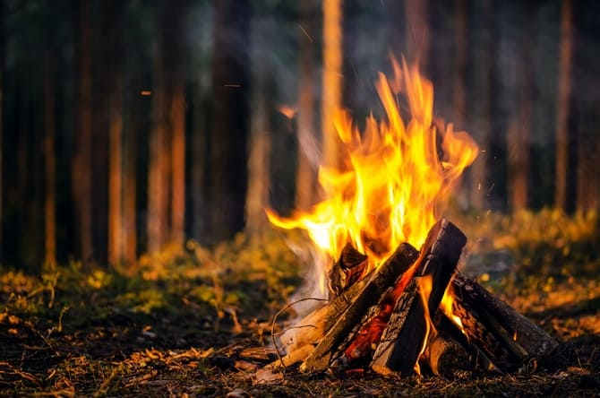 В лесу лучше разжечь костер-шалаш