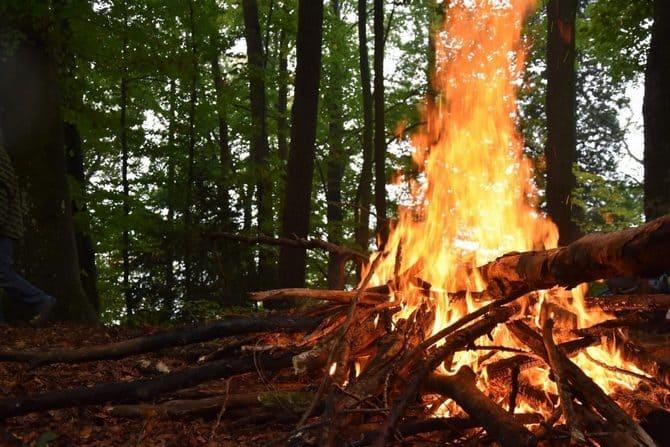 Не следует разводить огонь при наличии неубранной древесины