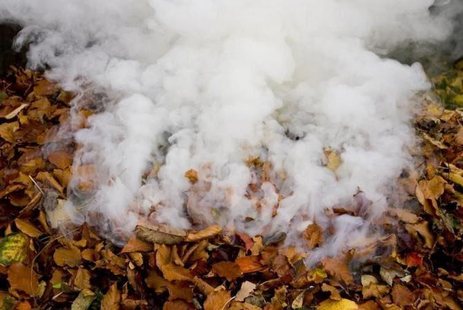 Сжигание листьев на даче запрещено