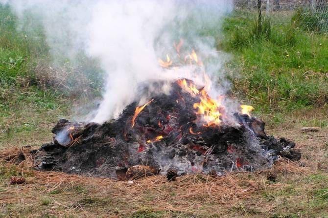 Сжигание травы и мусора на даче можно получить штраф до 200 тысяч рублей