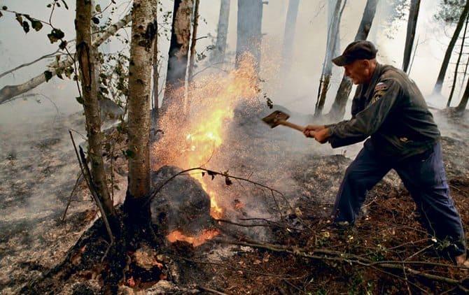 В лесу пожар эффективнее всего тушить землей