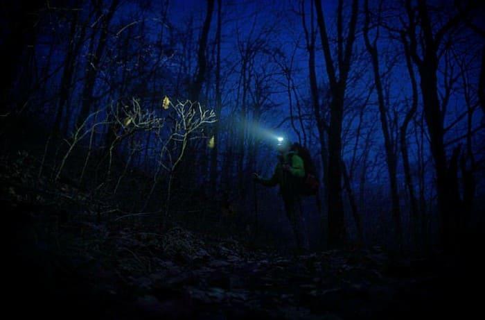 Натренированный слух - помощник в определении расстояния ночью