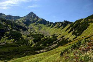 Южные склоны гор