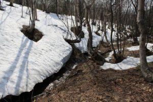 Таяние снега с южной стороны