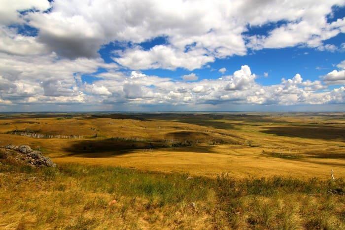 Южные склоны степей с зеленой травой