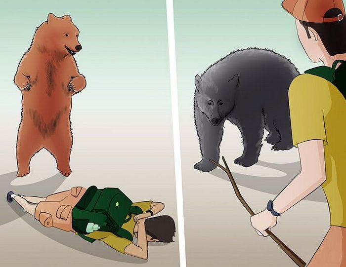 Реакция на нападение должна исходить из мотивации медведя