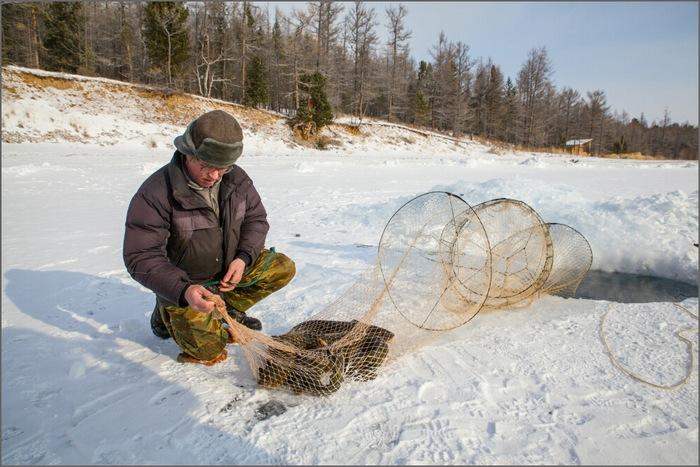 Ледяная ловушка эффективна во второй половины зимы