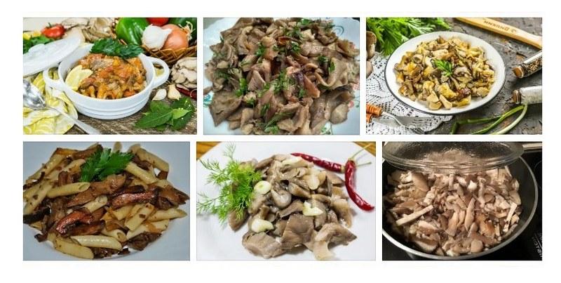 Из вешенок можно приготовить множество блюд на разный вкус