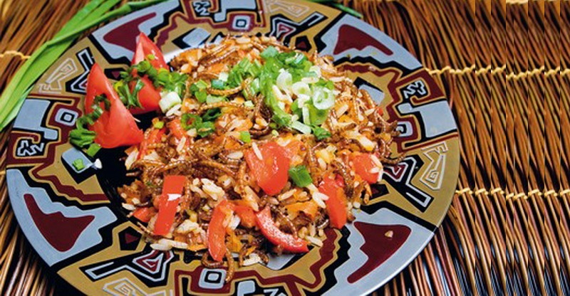 Мучные черви с рисом - традиционное блюдо жителей азиатских стран