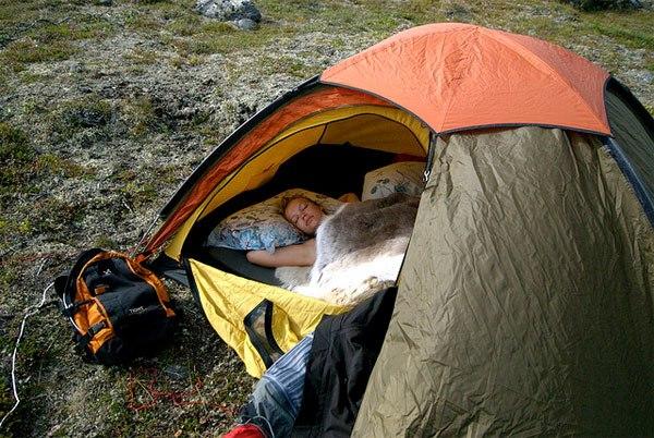 Палатка обычная