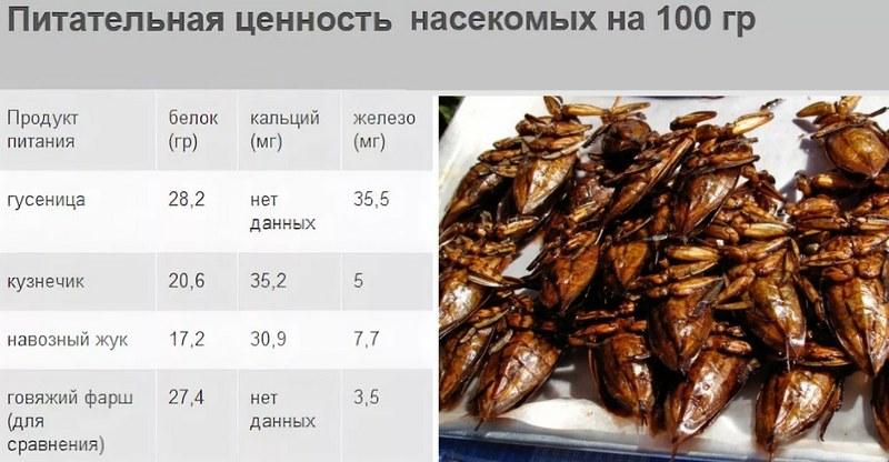 По своим питательным характеристикам насекомые почти не уступают обычному мясу