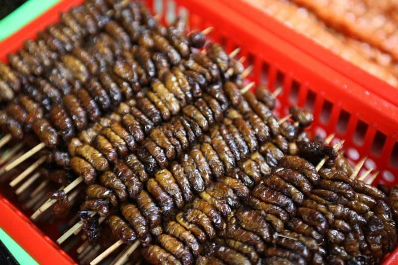 Приготовленные личинки шелкопряда напоминают орехи со вкусом яичницы