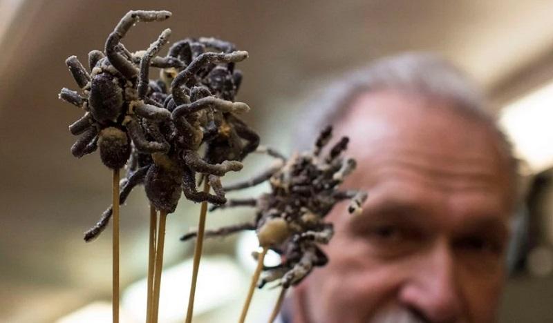 Жареные тарантулы — деликатесное блюдо в Камбодже