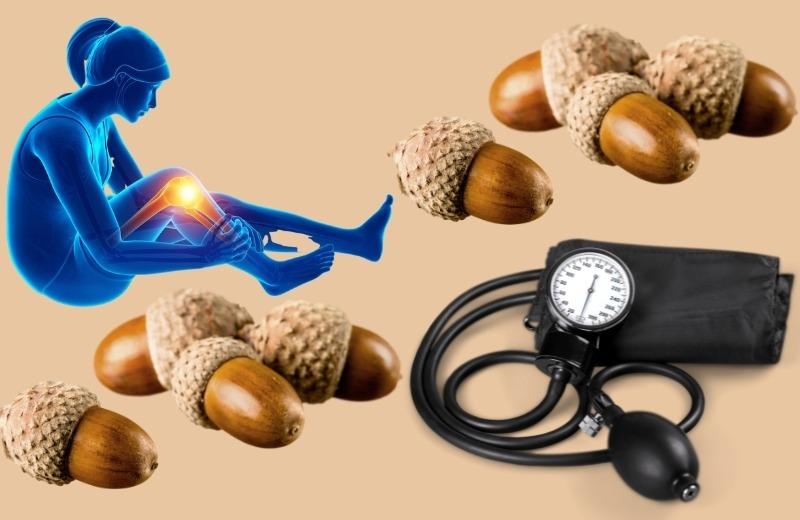 Дубовые желуди используют в народной медицине для лечения болезней суставов, нормализации артериального давления
