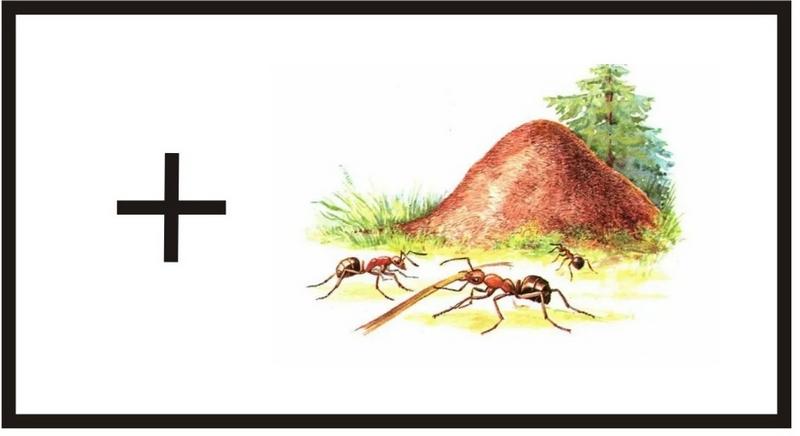 Муравейник относится к особым знакам и обозначается на карте маленьким крестиком