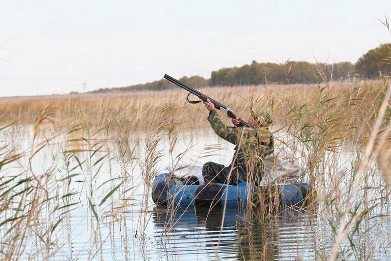 Охота с лодки очень удобна, если подойти к уткам по берегу невозможно или затруднительно