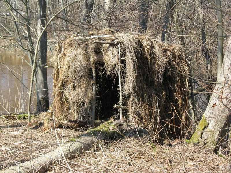 Осенью можно охотиться на зайца из засидки или укрытия
