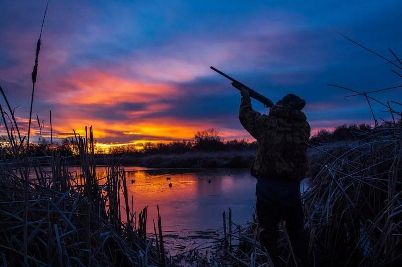 Перед охотой на уток зорями следует определить маршрут пролёта птиц и удобные места для засидки