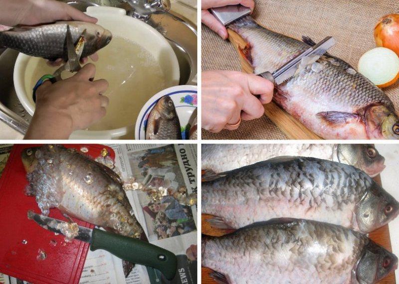 Перед тем как готовить рыбу, нужно тщательно подготовить тушку очистить от чешуи, удалить жабры и выпотрошить