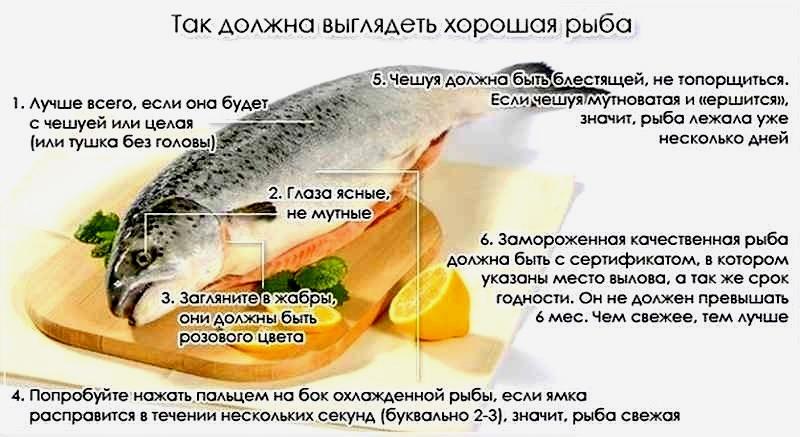 Признаки хорошей рыбы