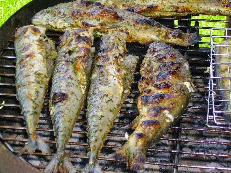 Речная рыба, запеченная на решетке - хорошая альтернатива мясному шашлыку