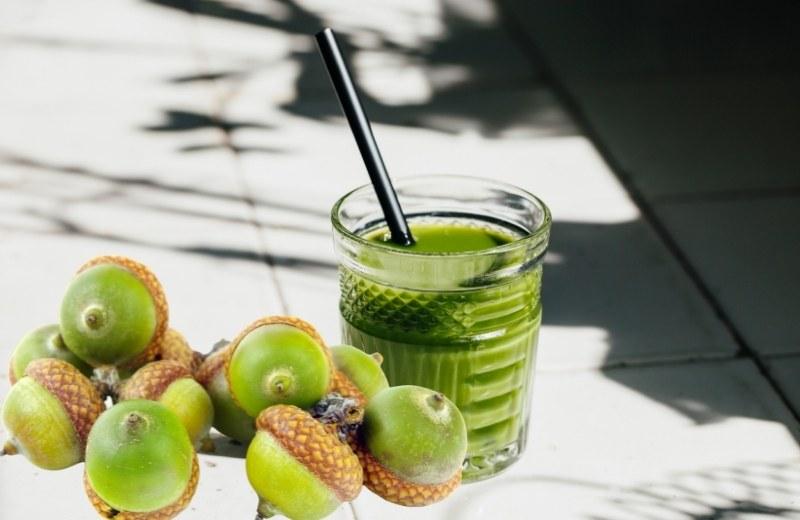Сок несозревших зеленых желудей полезен при анемии и воспалительных процессах мочеполовой системы