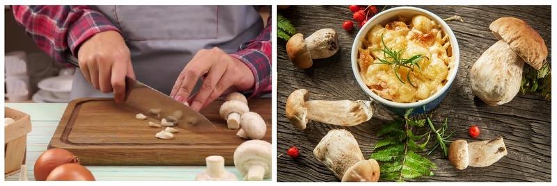 Важно знать и соблюдать правила приготовления полусъедобных грибов