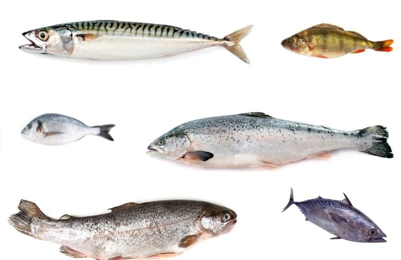 Виды рыб, которые идеально подходят для приготовления на мангале