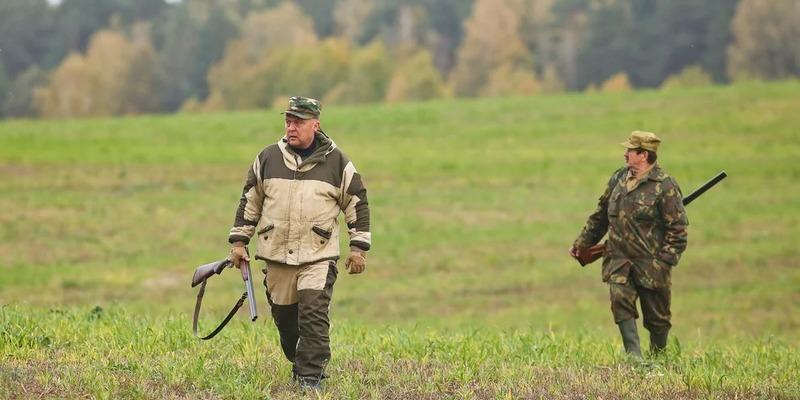 Загонная охота на зайца предполагает наличие нескольких человек