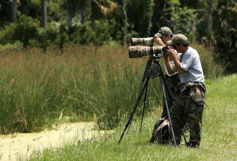 Занимаясь фотоохотой на зайца, можно почувствовать азарт и прилив адреналина