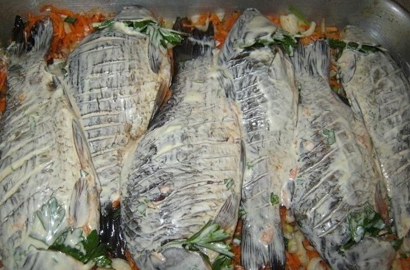 Запекание рыбы в майонезном маринаде прекрасно сохраняет ее вкус и аромат